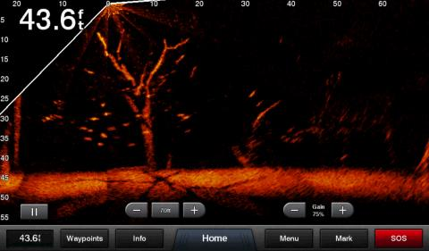 Panoptix LiveScope Screen2