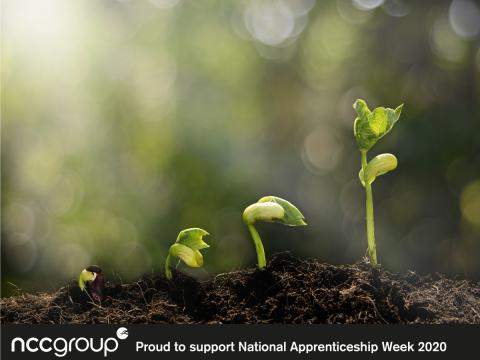 Celebrating Apprenticeships - Busting the Myths