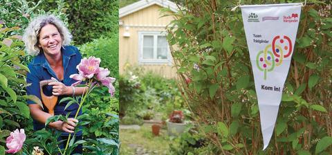 Träffa Tusen Trädgårdar året runt – med start på Sofieros Stora Trädgårdsfest