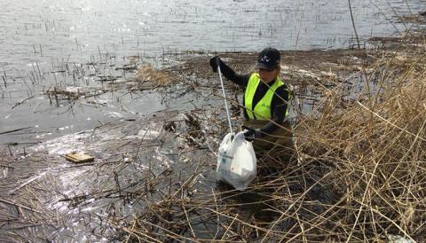 Gästrike återvinnare plockar skräp längs vattnet