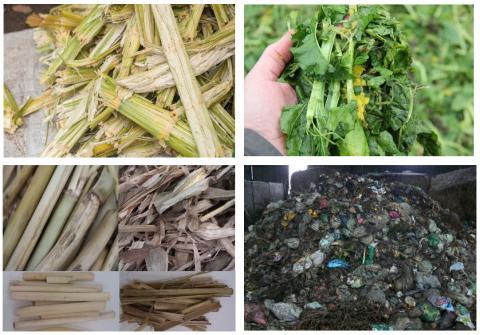 Ny evaluering: Sådan kan biogas gøres mere bæredygtig