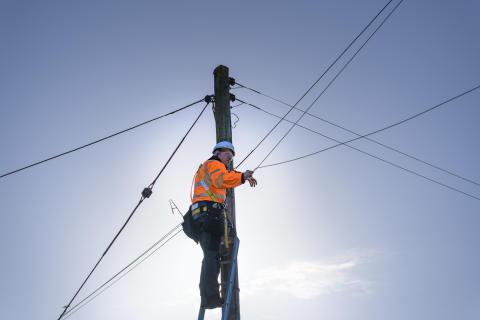 Engineer up pole (7)