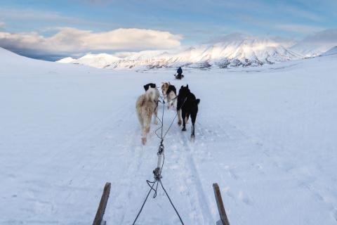Exkursionen ins Niemandsland – vom nördlichsten Punkt Norwegens geht es auf vielen Wegen immer weiter.
