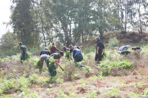 Woburn Forest team help at Cooper's Hill
