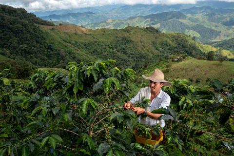 NYHET: Nespresso presenterar Reviving Origins - Kaffenyheter som både smakar och gör gott