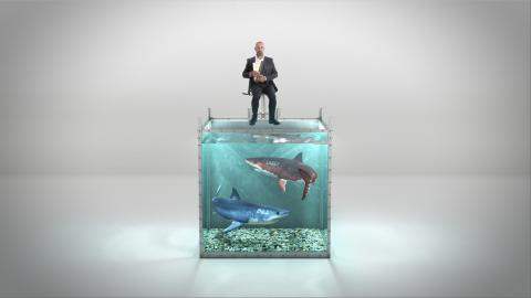 Introducing the shark tank challenge for CFOs