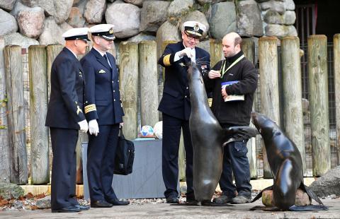Marine spendete 1.800 Euro für die Seebären