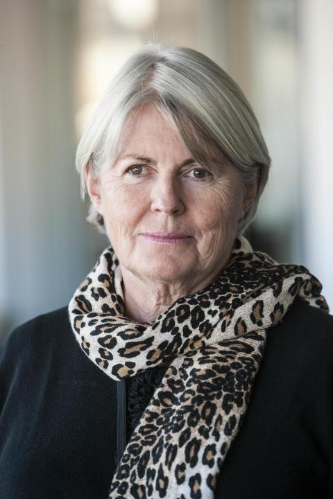 Birgitta Böhlin är tillförordnad generaldirektör