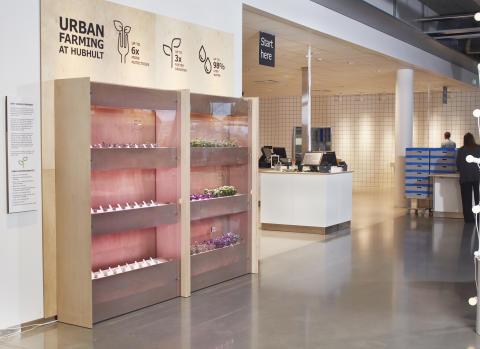 IKEA testar odling på höjden för mer hållbar mat