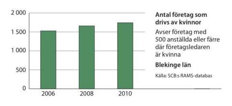 Kvinnors företagande ökar i Blekinge