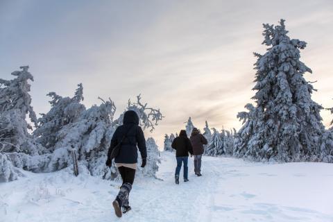 Weg mit dem Weihnachtsspeck - Willkommen zur Winter-Wanderwoche im Erzgebirge