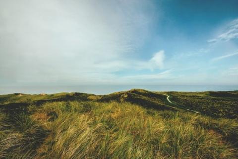 """Sonnerupgaard Gods: """"Afslapning omgivet af komplet dansk naturidyl"""""""