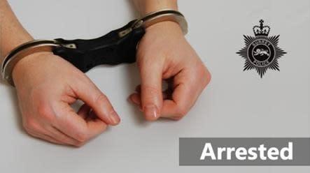 Four men arrested after stolen vehicle pursued in Shepperton