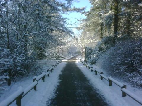 Center Parcs Longleat Forest battles the snow