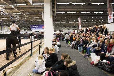 Hästuppvisning på EuroHorse 2015