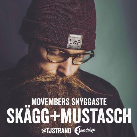 Movembers snyggaste skägg+mustasch