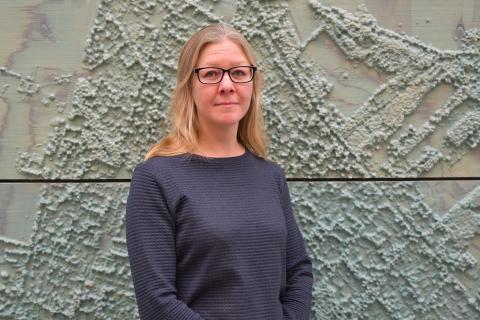 Region Skåne ska inte betala utbildning i arabiska för bibliotekspersonal