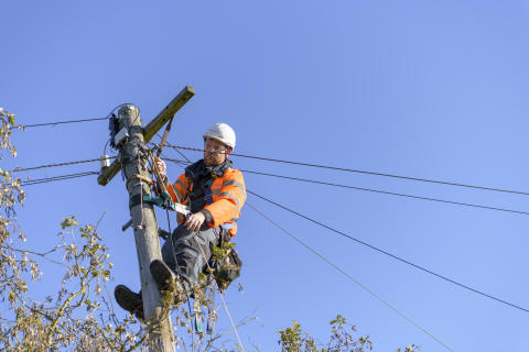 Engineer up pole (8)