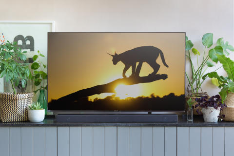 Living Room style with Sony ZF9 Soundbar 4b