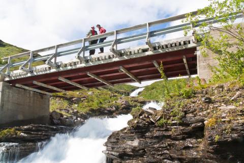 Kun 9 % av norske strømkunder velger fornybar energi, mens den rene norske vannkraften selges til utlandet