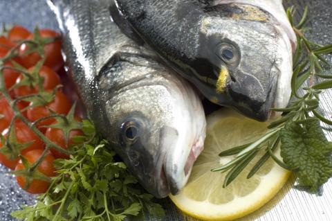 Formas ger 113 miljoner kronor till livsmedelsforskning