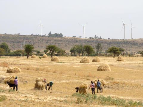 Danske vind-erfaringer sikrer grøn vækst og udvikling i Etiopien