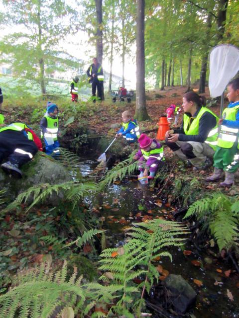 Tillsammans utforskar barnen naturen på Hovdala vandringsfestival 21 september