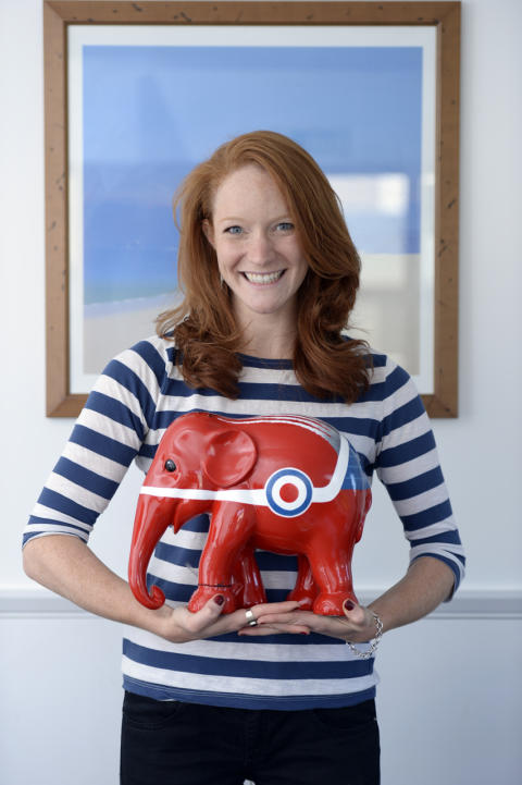 Take an elephant home this summer