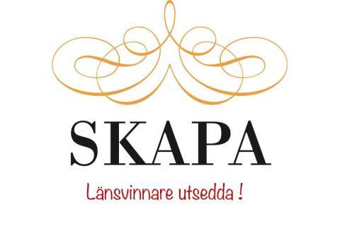 Årets SKAPA-pristagare 2020 i Västra Götalands län är utsedda - vi gratulerar!
