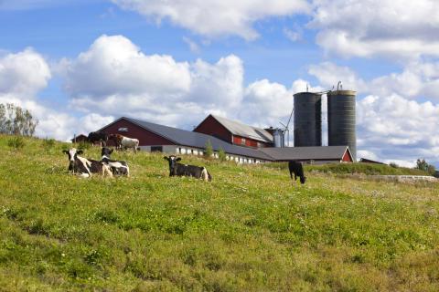 Aspögård i Ångermanland