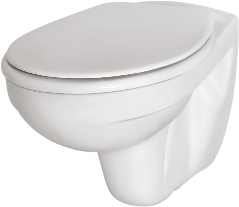Alterna Basic wc-skål