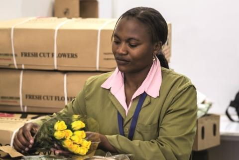 Panalpina to acquire Airflo, a specialized freight forwarder for flowers and vegetables, from Dutch Flower Group