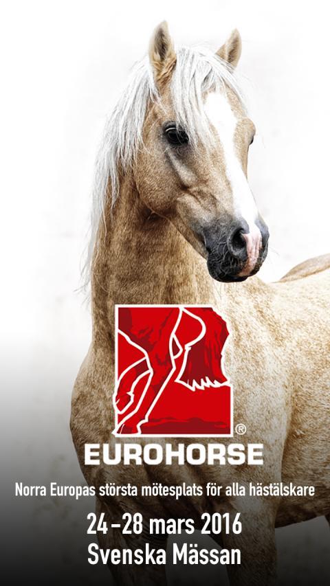 Dags för årets hästfest i Göteborg – 100 000 väntas till EuroHorse