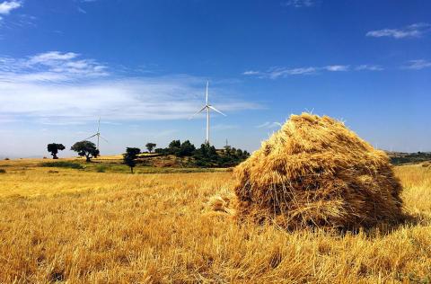 Rapport viser vejen mod mere vindkraft i Etiopien