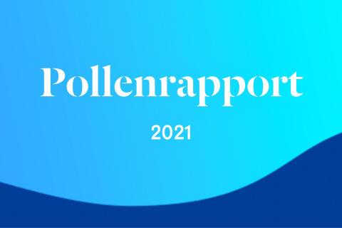 Många drabbas när pollenprognoser hotas- ny undersökning