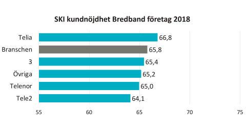 SKI kundnöjdhet Bredband B2B 2018
