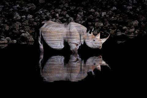 Drei Schweizer Fotografen in der engeren Auswahl für die Sony World Photography Awards 2017 – dem grössten Fotowettbewerb der Welt