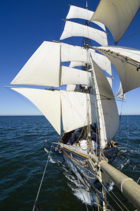 Tre Kronor af Stockholm för fulla segel