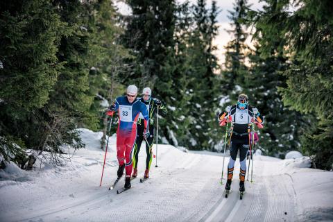 Flere vil gå Trysil Skimaraton