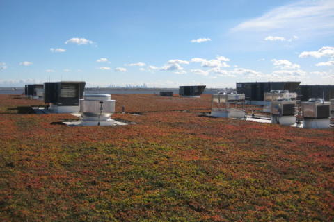 Vast vegetated roof installed at Chicago O'Hare Int. Airport