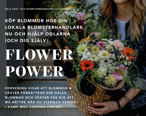 Poster_FlowerPower