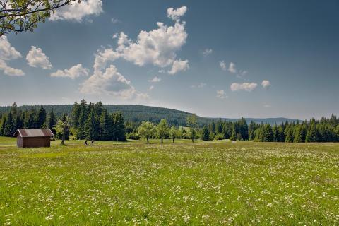 Naturidylle und Zweiradliebe _Foto_Tourismusverband Erzgebirge e.V.R.Gaens