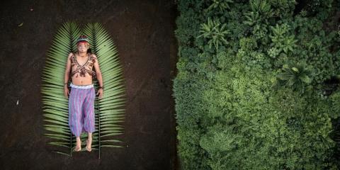 Sony World Photography Awards - Les Grands Gagnants 2020 annonce des lauréats des concours Professional, Open, Student et Youth