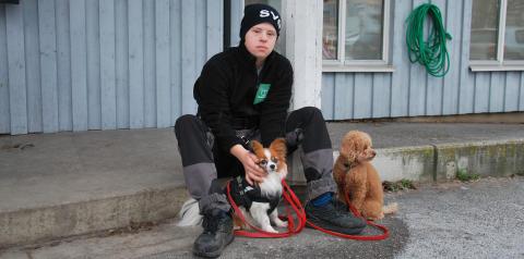 Hundskötare