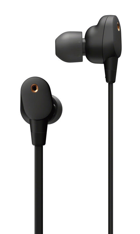 WI-1000XM2_earphone_B-Large
