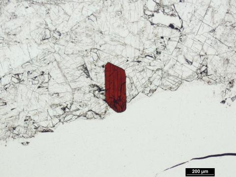 Helt nytt mineral upptäckt