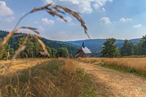 Herbst- Wanderwoche im Erzgebirge