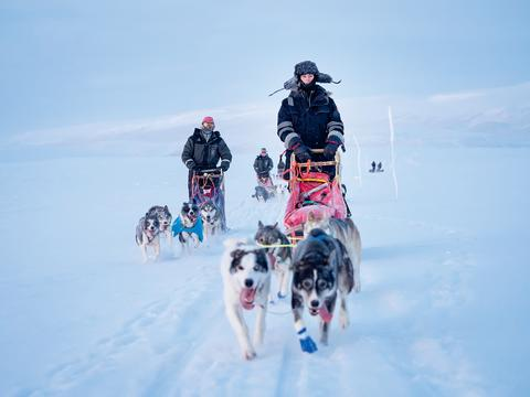 Dogsledding and gourmet dining