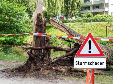 Es wird stürmisch – jetzt alles windsicher machen