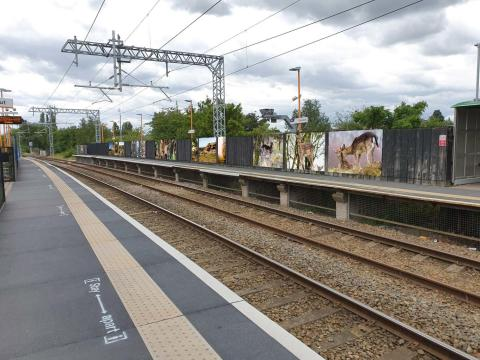Dozens of murals to be installed at Cannock station under improvement scheme